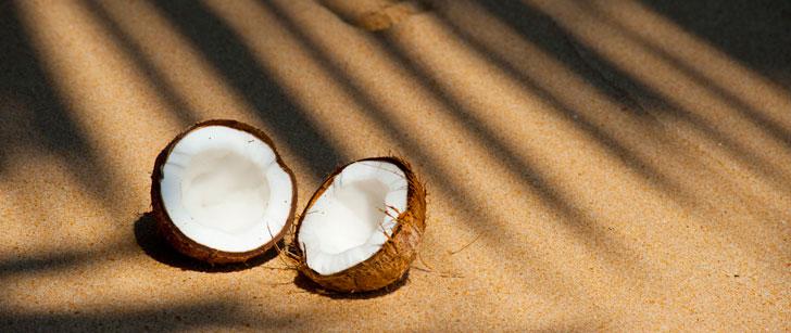 Noix de coco et plage du Sri Lanka